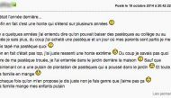 pasteque perles des forums